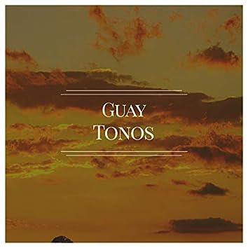 # 1 A 2019 Album: Guay Tonos