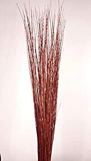 Green Floral Crafts - Asian Willow Stems - Burnt Red Orange
