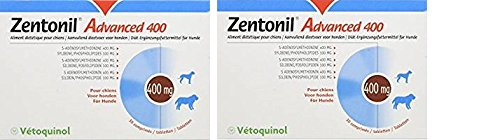 Zentonil Advanced 400-2 x 30 Tabletten (60 Tabletten)