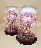 Rosas eternas Color Rosa Claro. Cúpula de Cristal de 25 cm Altura. Cúpula de Rosas preservadas Rosa Claro. Musgo liofilizado y Flores preservadas. Fabricado en España.