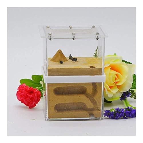 ZKZK Ant Farm Castle Acryl Box, Werkstatt Landschaftsbau Handwerk Kombination Ant Nest, Studie von Ant Behavior & Ecosystem (Farbe: A) (Color : A, Size : -)