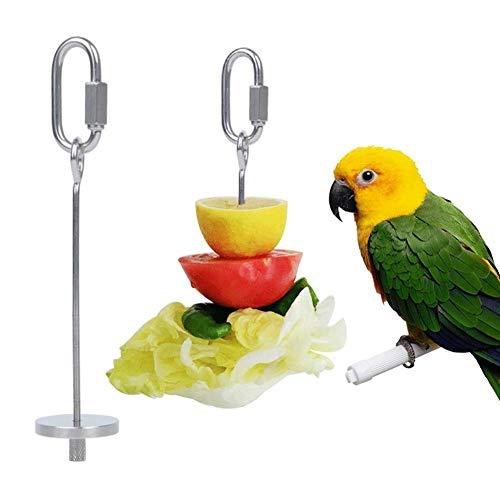 DXQDXQ Vogel Papageien-Spieß Obst Halter Edelstahl Papagei und Gemüsehalter Frucht Gemüse Spieß Werkzeug for Vögel Papageien Wellensittiche Sittiche Nymphensittiche Spielzeug (Size : S)