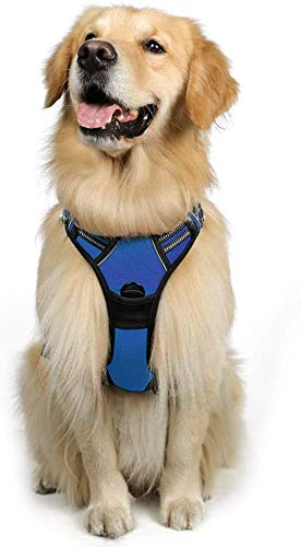 rabbitgoo Dog Harness No-Pull Pet Harness Adjustable Outdoor Easy Control Pet Vest Reflective Oxford Material Vest for Large Dogs (Blue, L)