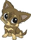 Bambinella® Bügelbild Aufbügler - gedruckte Velour/Flock Applikation zum selbst Aufbügeln - Motiv: Hund Chihuahua Langhaar - gefertigt in eigener Werkstatt in Neuhof/Deutschland