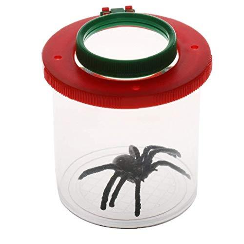 ZYCX123 Lupe mit Spinne Kinder Insekt-Viewer Lupe Loupe Hinterhof-Bug-Mikroskop mit künstlichen Spinnen für Bugs Röcke Pflanzen Samen