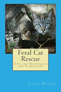 Feral Cat Rescue: Tips and Techniques for Caregivers