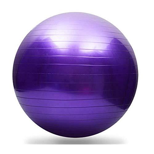 CYSHAKE 45 cm Pilates Bola de Yoga Gimnasio Equipo de Gimnasio Hogar Pequeño Balance Masaje Gimnástico Ejercicio Entrenamiento Entrenamiento (Color : Purple)