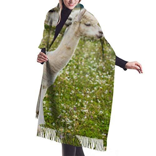 VJSDIUD Bufanda chal 27'x77' Summer Scarf Close Up Portrait Of Two Cute Alpacas Light Cashmere Scarf Long Fringed Scarf Stylish Large Warm Blanket