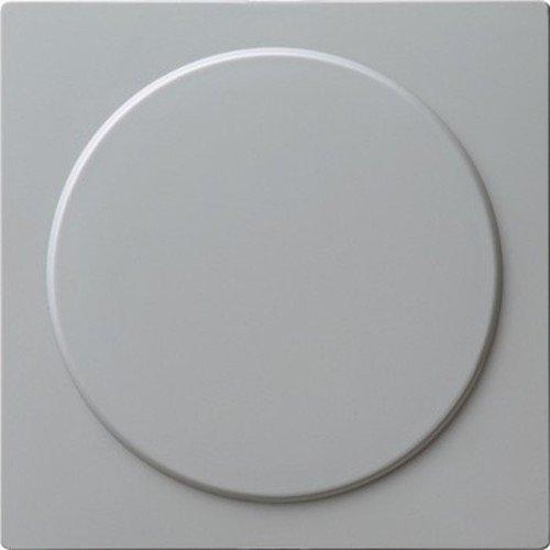 Gira 026842 Blindabdeckung mit Tragring S, grau