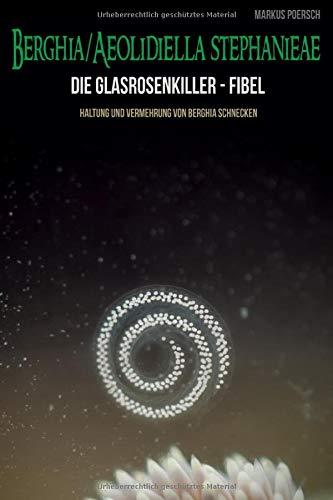 Die Glasrosenkiller-Fibel: Haltung und Vermehrung von Berghia Schnecken. Berghia- /Aeolidiella stephanieae
