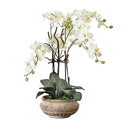 Pureday Kunstpflanze Orchidee weiß-Creme mit Übertopf aus Keramik braun 58 cm hoch
