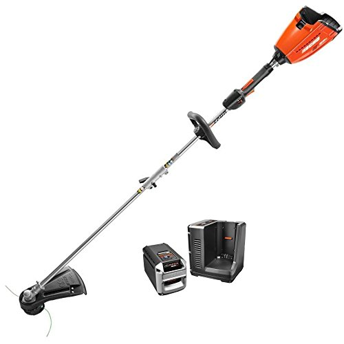 ECHO CST-58V4AH 58-Volt Lithium-Ion Brushless Cordless String Trimmer with 4 Ah Battery