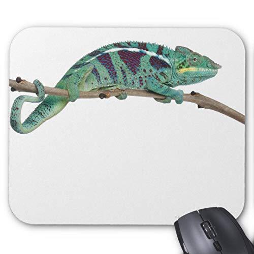 Mauspad aus Gummi, rutschfest, rechteckig, für Computer/Laptop, 20 x 24 cm, Panther Chamäleon, Nosy Be Furcifer Pardalis