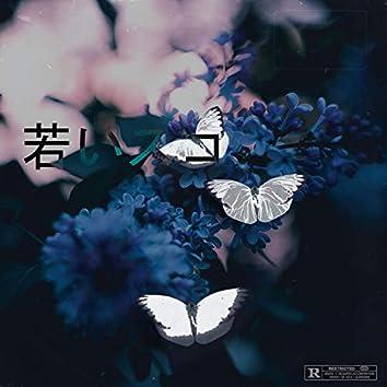 Isolated EP
