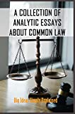 A Collection Of Analytic Essays About Common Law: Big Ideas Simply Explained: Legal History Book (En...