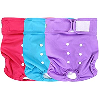 Best washable diapers for dogs Reviews