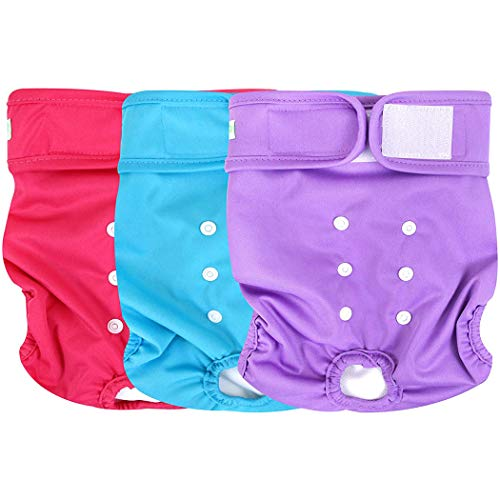 wegreeco Washable Reusable Premium Dog Diapers, Small, Bright Color, for Female Dog, Pack of 3
