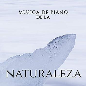 Musica de Piano de la Naturaleza – Musica Relajante para Descansar, Spa, Meditacion, Sueno, Desestresarse y Otras Formas de Relajacion