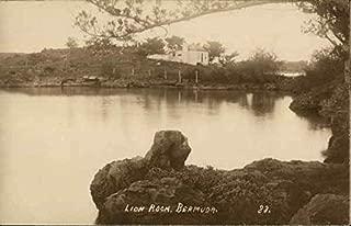 View of Lion Rock, Bermuda Lion Rock, Bermuda Original Vintage Postcard