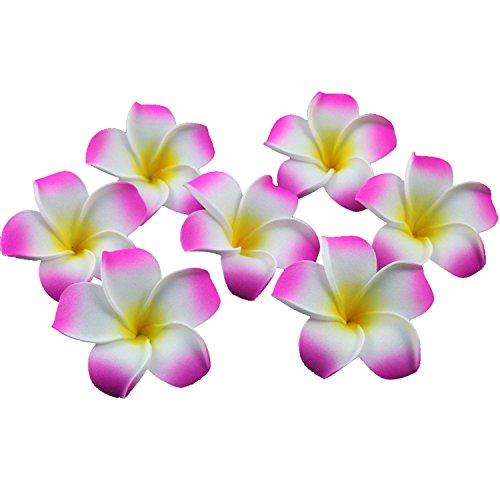 TININNA 100 Pcs Plumeria Mousse Deco Galets Hawaïen Mousse Fleur de Frangipanier pour Mariage Décoration Fête