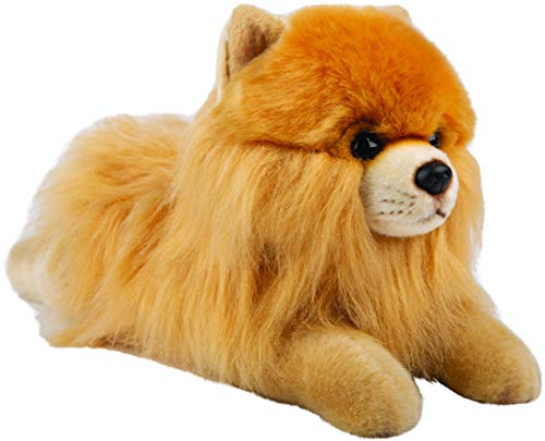 Suki Gifts 12144 Pomeranian - Perro enano de peluche tumbado, multicolor