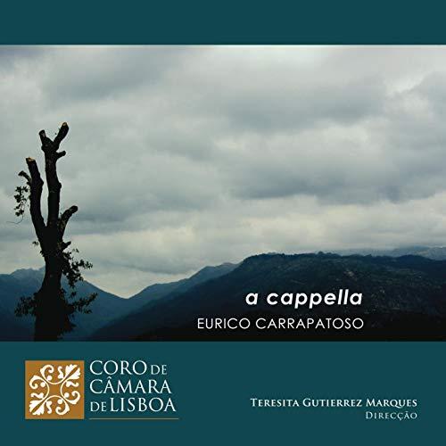 Drei Lieder mit Worten: Coral A (Aldeia da Caridade)