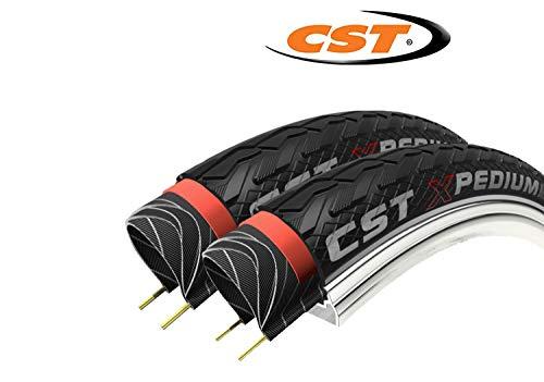 CST 2 x Fahrradreifen 28