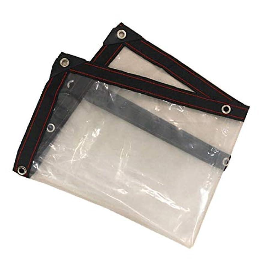 支配的祖父母を訪問スクラップブック屋外シェルター防雨コールドプルーフ熱ダストカバーのために使用される防水透明なプラスチックフィルム 多目的防裂布カバー、日よけ (Size : Size 3 x 3 m)