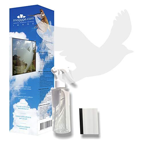 Decooo.be 22 Fenster-Warnvögel - Vogel Sticker - Verhindert Vogelschlag - Set komplett mit Spray und Rakel - Selbstklebend greifvogel-Silhouetten verfügbar - Farbe : Lichtdurchlässiger gesandstrahlt