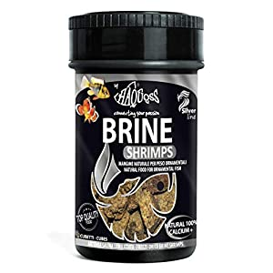 Haquoss Brine Shrimps Freeze Dried Natural Food for Freshwater and Marine Fish 100ml/8gr