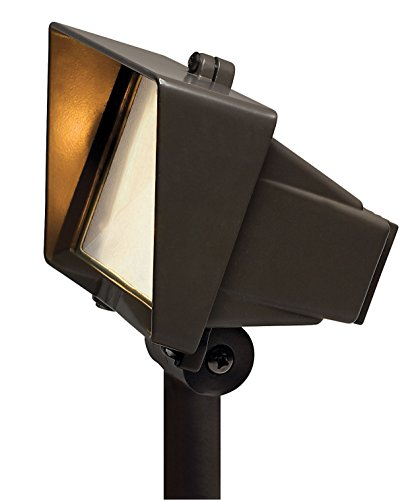 Hinkley Lighting 1521BZ Accent Flood Light with Frosted Lens, Bronze
