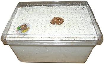 人工産卵床・簡単セット SN2500M