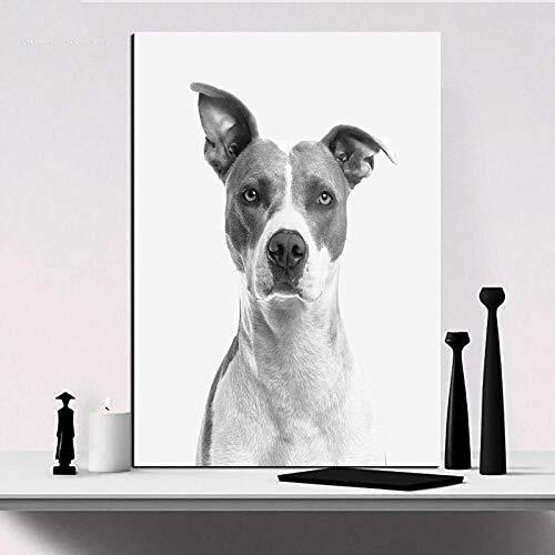 Pintura al óleo póster Pintura al óleo de animales en blanco y negro cuadro de galgo Cuadros decoración lienzo pintura para sala de estar pared arte impresión sin marco 40X60cm
