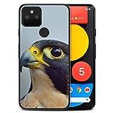 Stuff4 Phone Case for Google Pixel 5 Birds of Prey