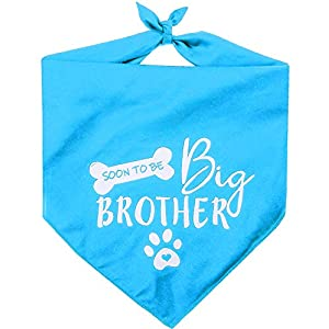 Pawskido Big Brother Bandana for Dog,Pet Scarf Pregnancy Announcement