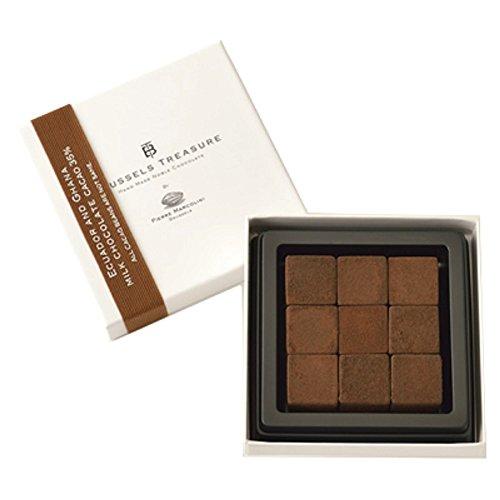 ピエールマルコリーニ 生チョコレートエクアドル アンド ガーナ ミルクチョコレート9個(ギフト梱包・ギフ...