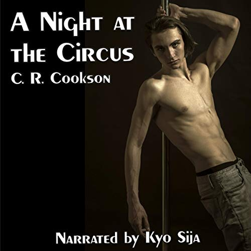 A Night at the Circus cover art