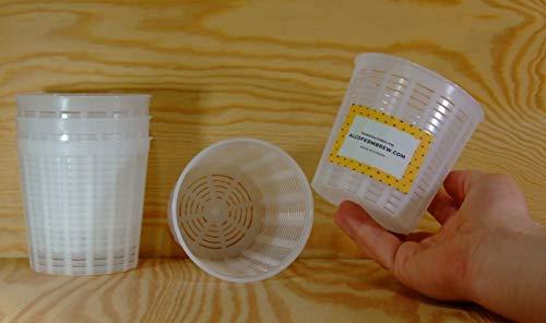 5 moldes de queso – 0,35 kg – 98 x 10 cm – Forma de queso | Molde para queso casa