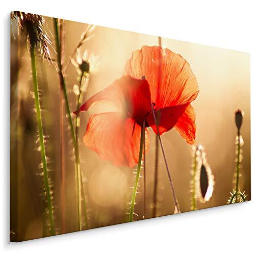 Muralo Wandbilder Blumen 40 x 30cm Bild auf Leinwand Wandbild Kunstdruck Mohnblumen Sonne Leinwandbilder Schlafzimmer Wohnzimmer Wanddekoration Design Wand Bild Natur Landschaft