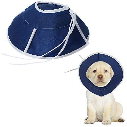 Gofeibao Collar Isabelino Perro Collar Isabelino Gato Cabeza de Perro Cono Perro médico Collares Los Gatos Collar Protector de Gato Collares Cono S