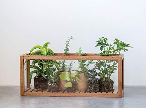 Creative Co-op Vitrine aus Mangoholz und Glas, rechteckig, Braun