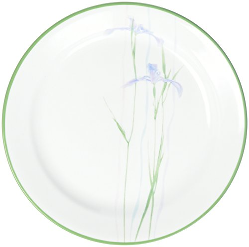 Impressions Shadow Iris 9' Plate [Set of 6]