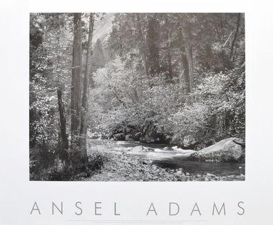 Ansel Adams Tenaya Creek Poster Kunstdruck Bild 64x73cm