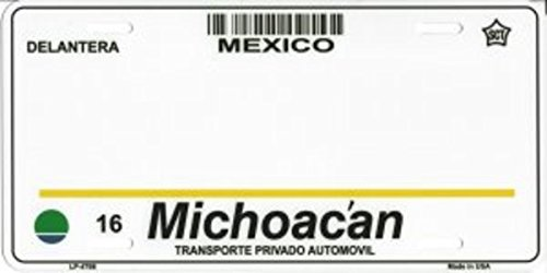 Smart Blonde Michoacan Mexico Look A Like Metal License Plate