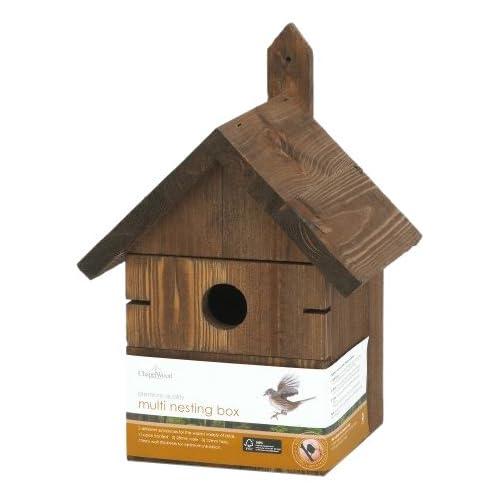 Bird Box Amazon Prime