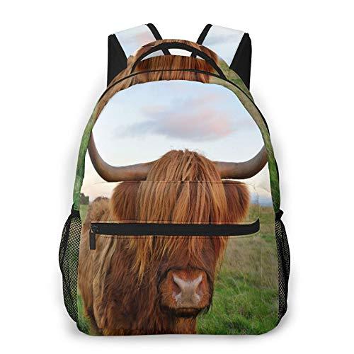 Multifunzionale Casuale Zaino,Sweet Brown Cow Highland Cattle Parks Look rosso Agricoltura scozzese Razza da carne Design car,Pacchetto a Doppia Spalla Borsa Sportiva da Viaggio Notebook per Computer