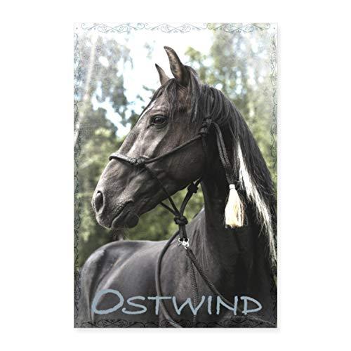 Spreadshirt Ostwind Aufbruch Nach Ora Schwarzer Hengst Poster 40x60 cm, Weiß