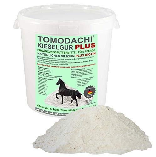 Tomodachi Kieselerde Plus Biotin Futterzusatz Pferd natürliche Kieselgur Plus Bierhefe für eine ausgewogene Ernährung reich an natürlichem Silizium, Calzium, Mineralien, Spurenelementen 3 Liter Eimer