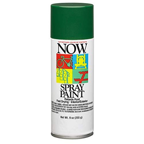 Krylon I21205007 Now Spray Paint, 9-Ounce, Hunter Green