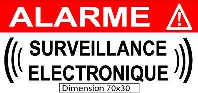 Autocollant de Dissuasion Alarme Surveillance électronique Lot de 10 pièces réf AS23